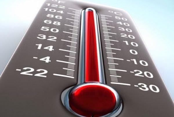Влияние изменения температуры на гормон роста