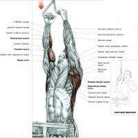 Тяга верхнего блока к груди параллельным хватом